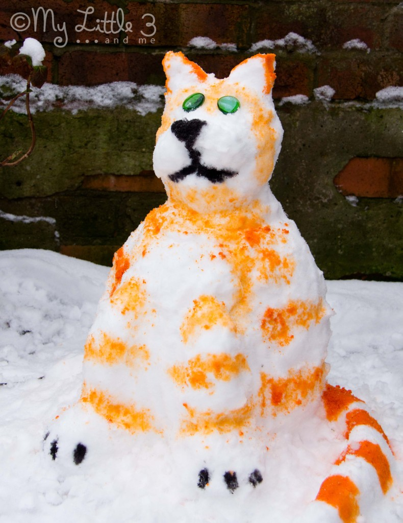 Tabitha-The-Snow-Cat-790x1024