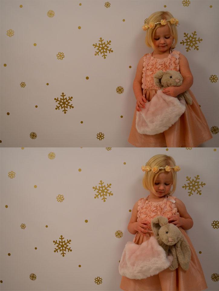 Toy-Bunny