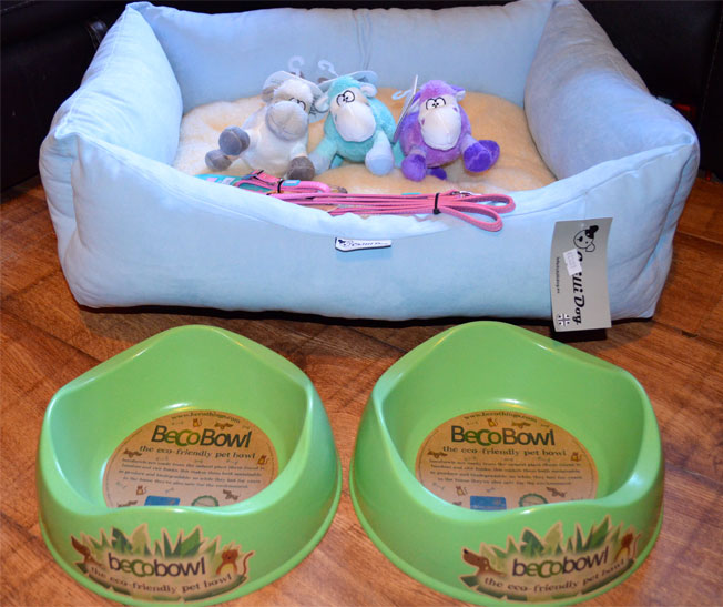Puppy-Products