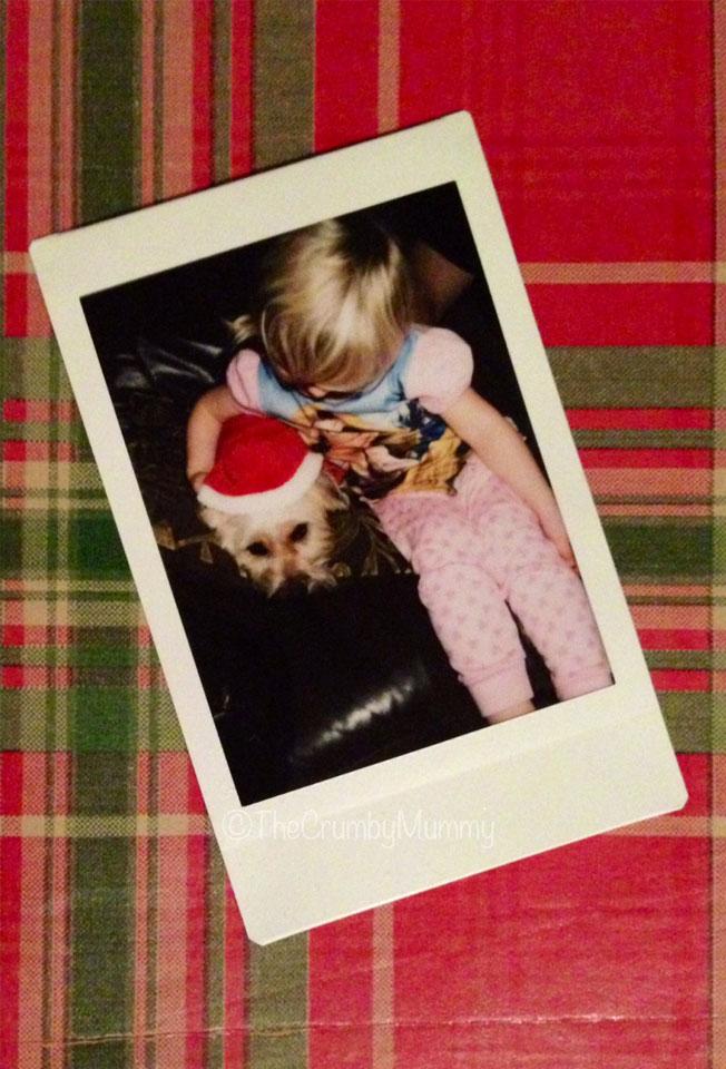 Christmas-Dog-Pyjamas