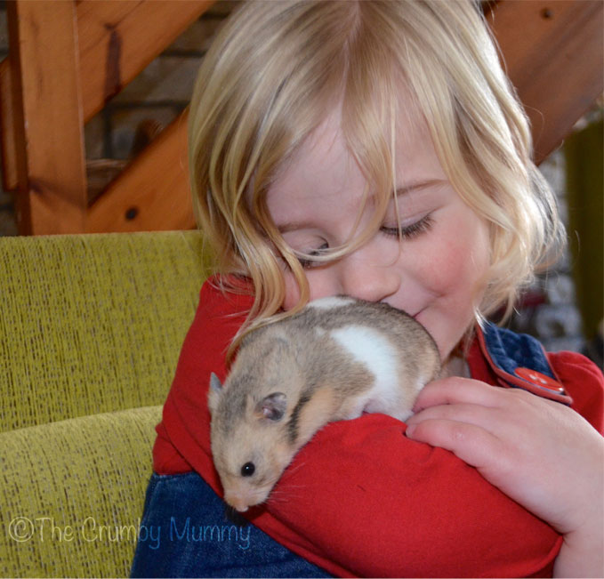 Hamsters-and-Children