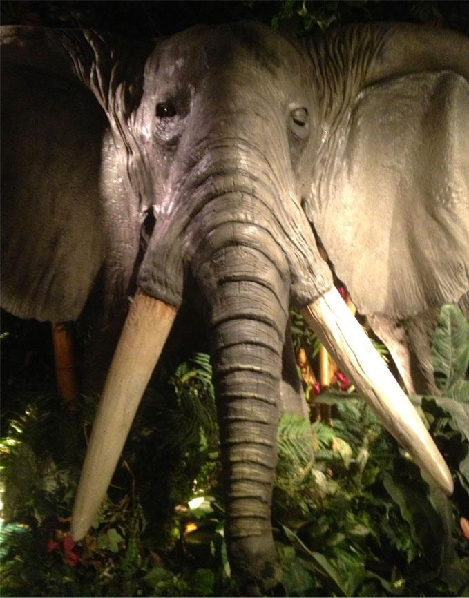 Rainforest-Cafe-Elephant