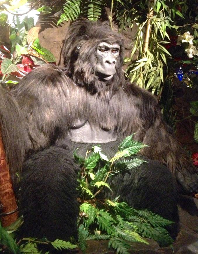 Rainforest-Cafe-Gorilla