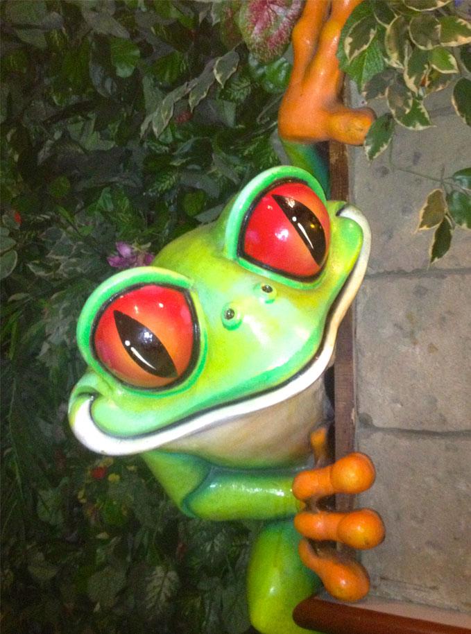 Rainforest-Cafe-Tree-Frog