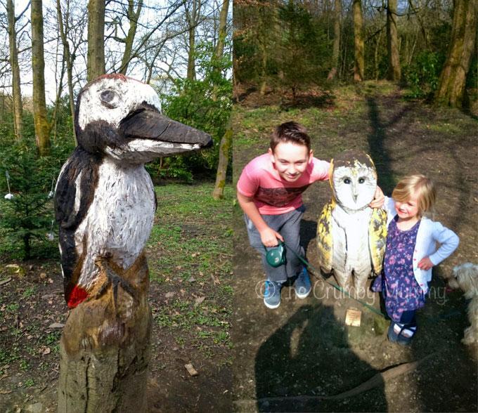 Wood-Trail-Towneley-Park