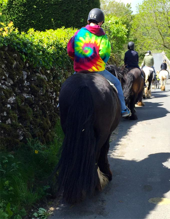 Pony-Trekking-Kilnsey