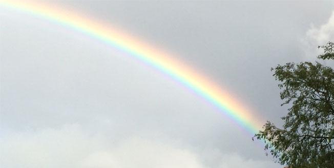 a rainbow for a rainbow baby