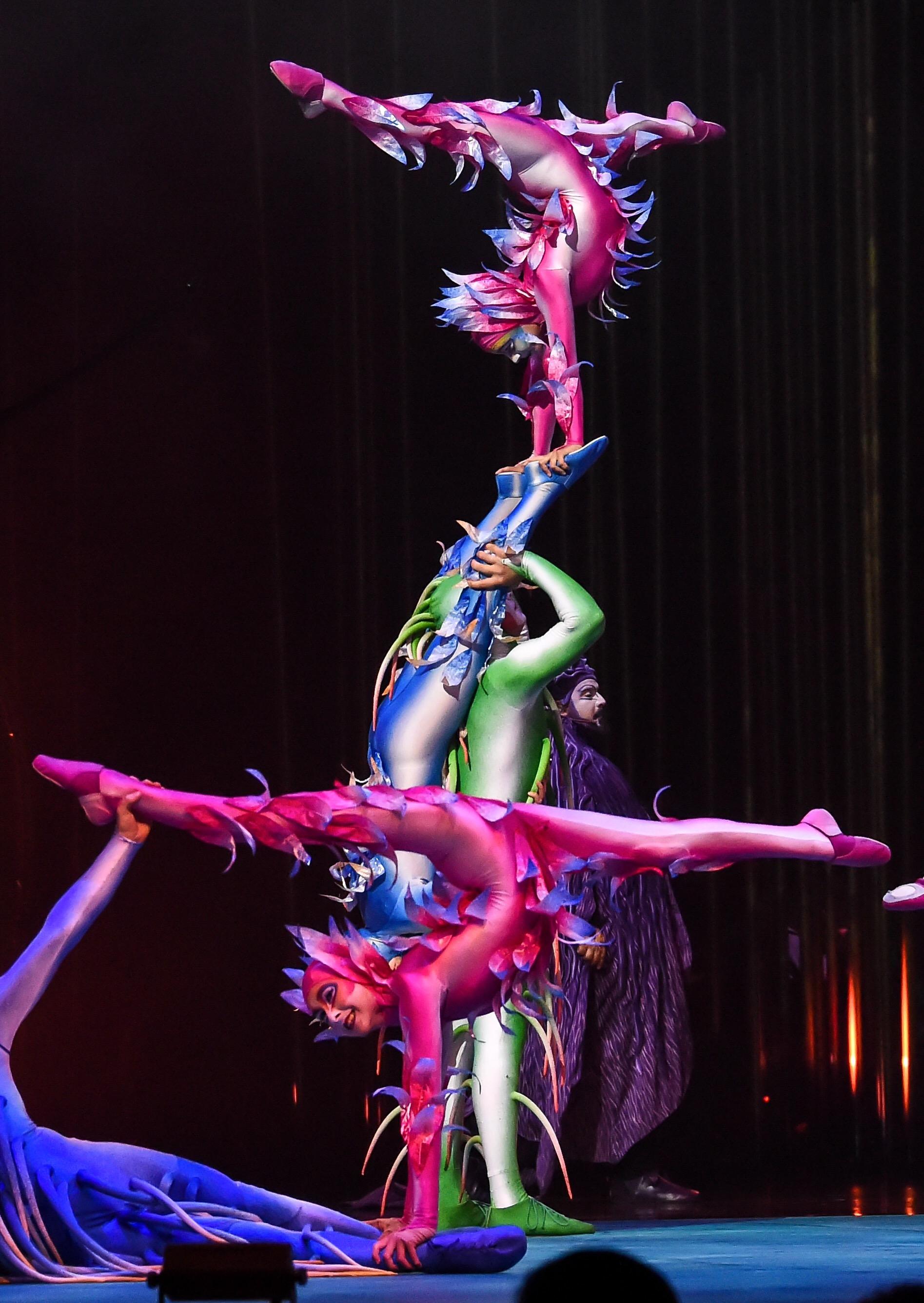Cirque Du Soleil Varekai Review