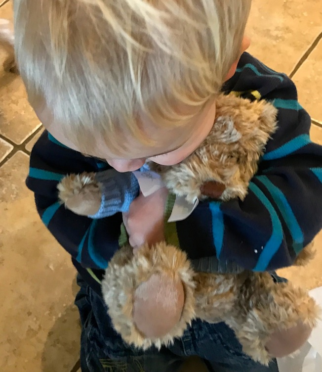 teddy bear for a toddler
