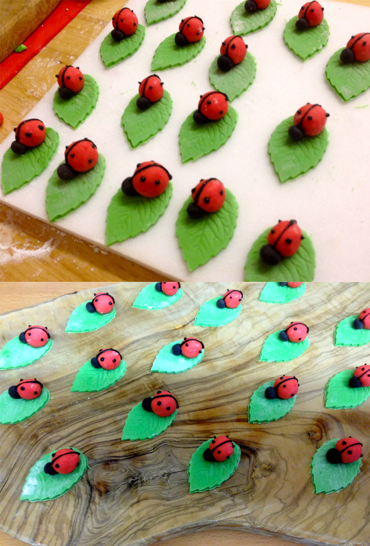 Ladybirds & Strawberry Flowers