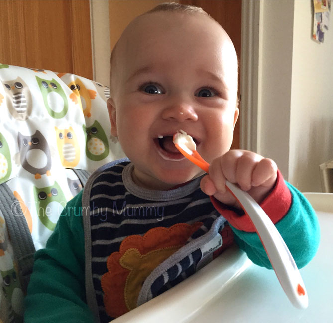 baby first tastes weaning